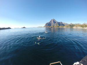 Lofoten Swimming
