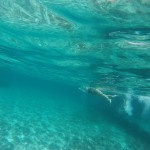 Crystal clear waters of Formentera