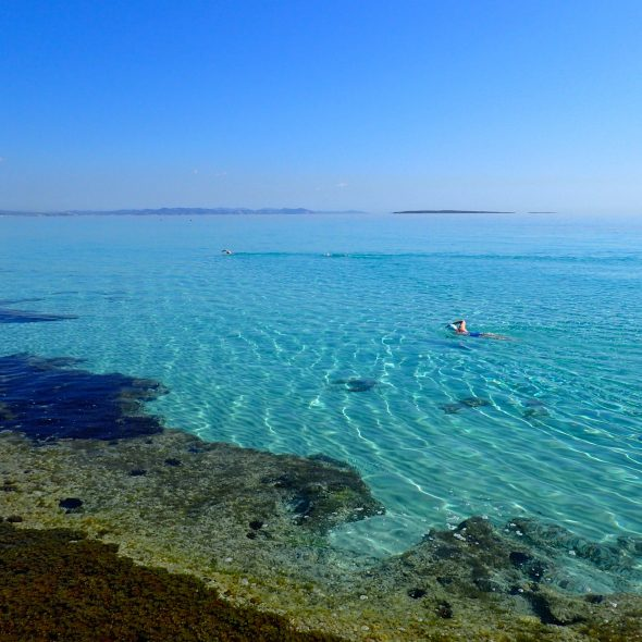 Formentera distance swim training