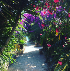 Walking through between the bungalows Meneghello Croatia
