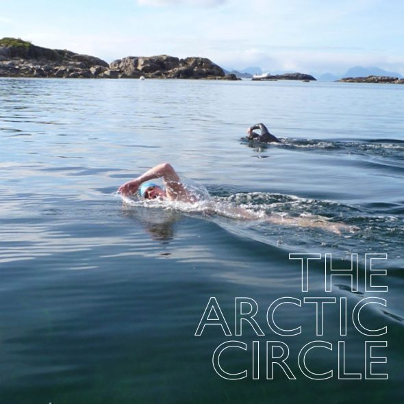 ARCTIC CIRCLE WEB