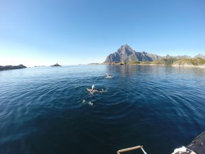 Lofoten Swimming