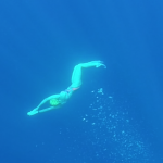 Alice Todd - SwimQuest Guide