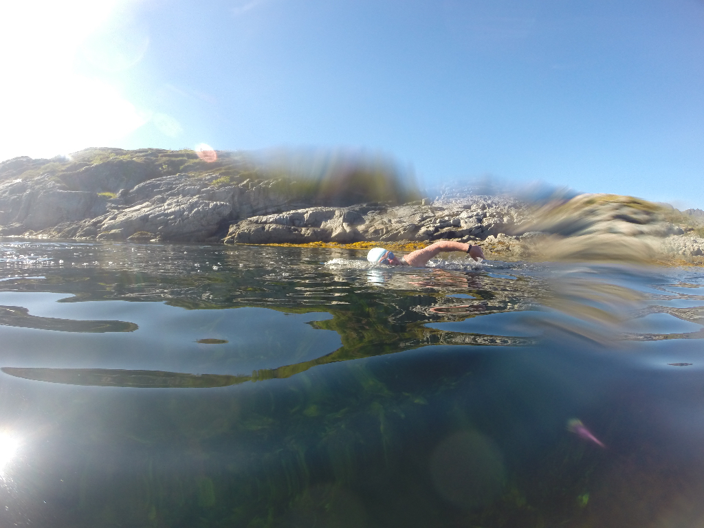 A swimmer in Lofoten