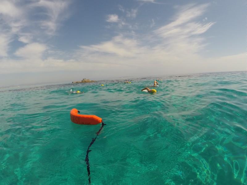 Improvers Tour, Formentera SwimQuest Swimming Holidays