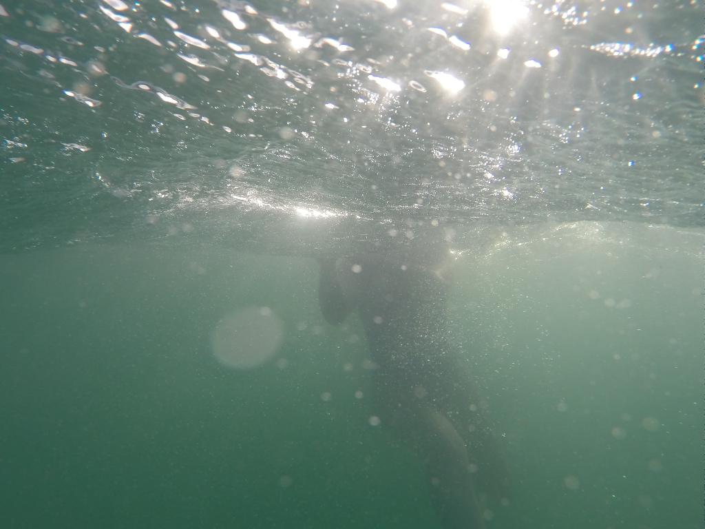 Light underwater - winter swimming