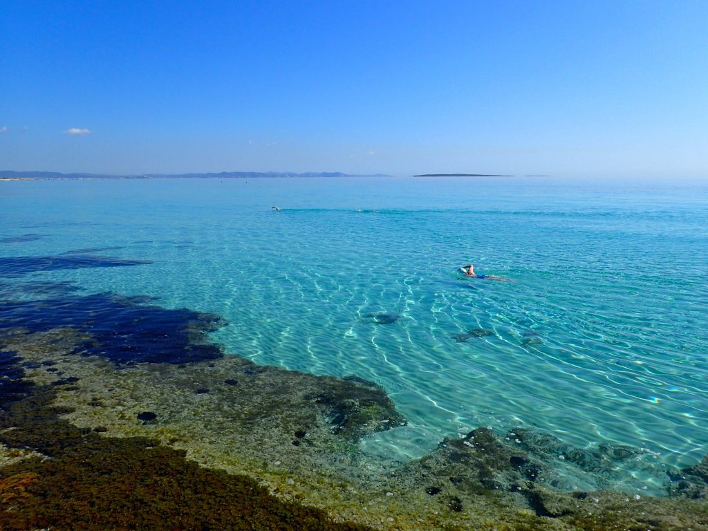 swim quest formentera improvers tour