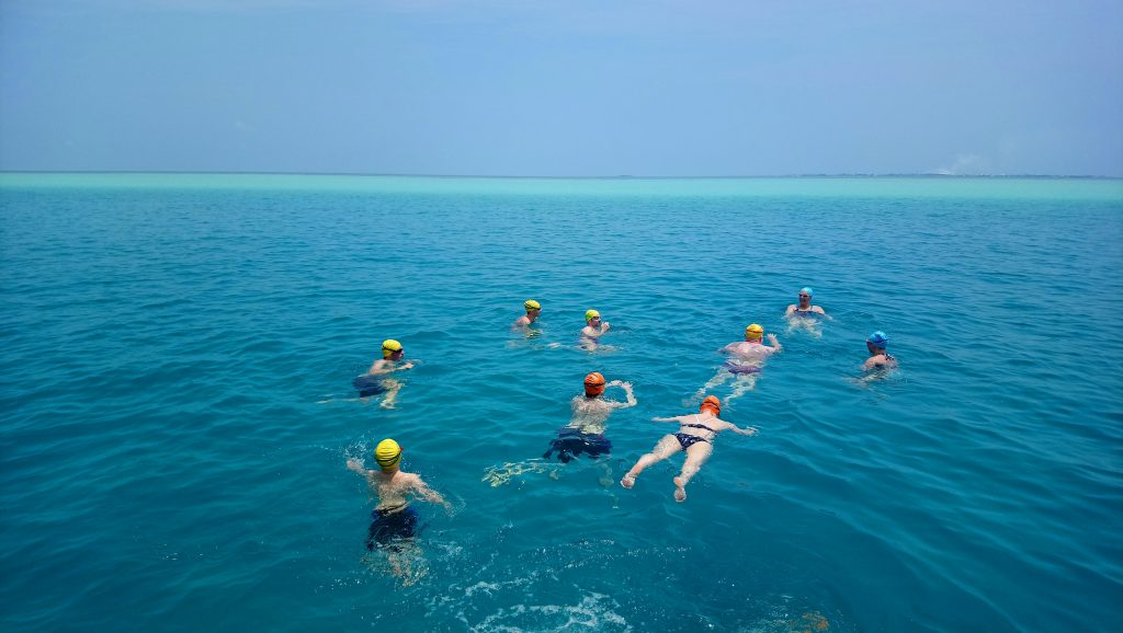SwimQuest Maldives pod of swimmers