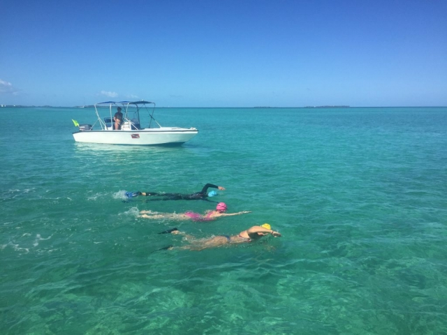 SwimQuest Swimmers in Bahamas