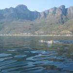 12 Apostles swim