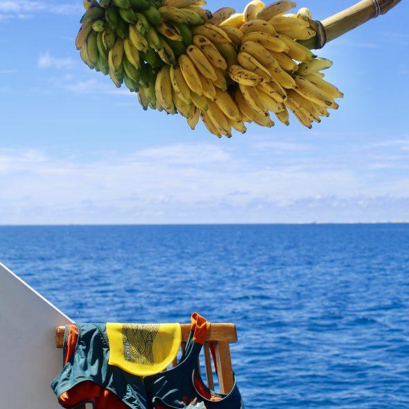 SwimQuest Maldives Beginners Tips