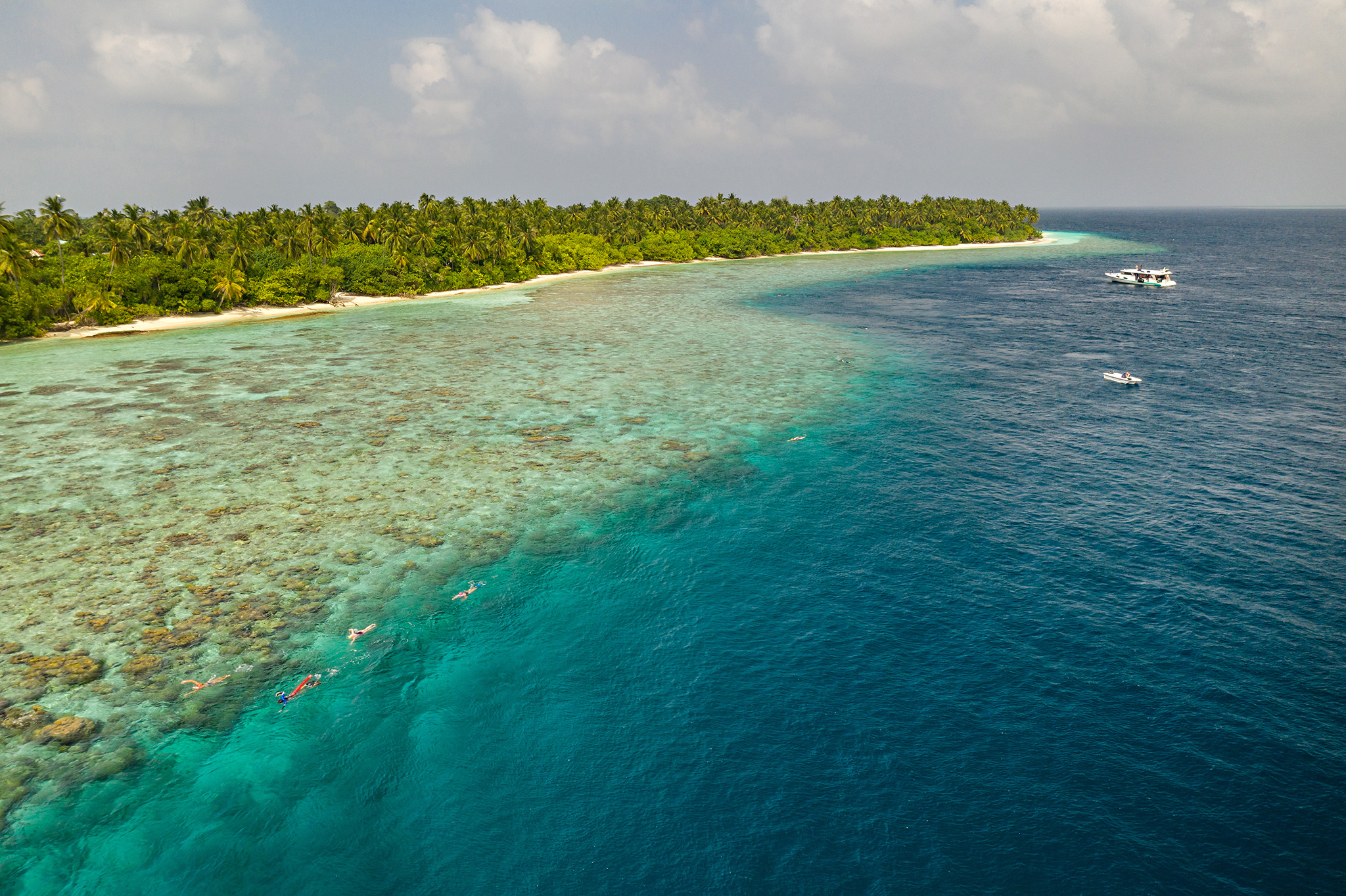 Maldives Swimming Holiday - liveaboard the MS Emperor Virgo